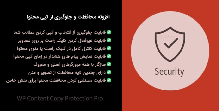 افزونه WP Content Copy Protection Pro