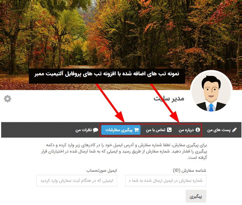 نمونه تب های سفارشی ایجاد شده توسط افزونه Ultimate Member - Profile tabs Add-ons