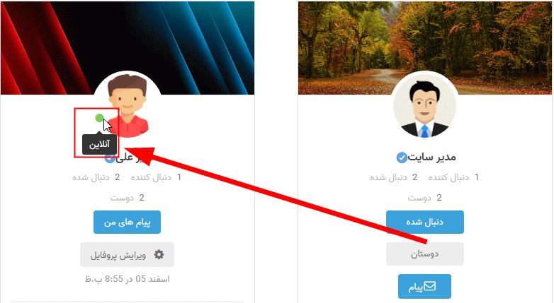 تنظیمات عمومی افزونه Ultimate Member - Online Users